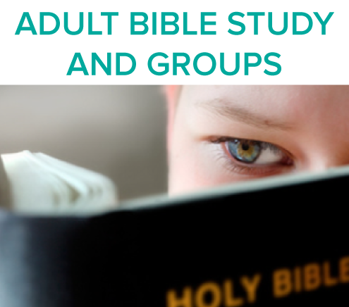 adult-bible